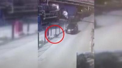 Mama yiyen köpek görünce direksiyonu kırıp köpeği ezen katil kamera görüntülerine rağmen serbest bırakıldı