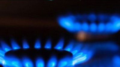 Pamir: Doğal gaza yeni zam sürpriz olmaz!
