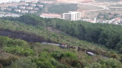 Pendik'teki orman yangını kontrol altına alındı