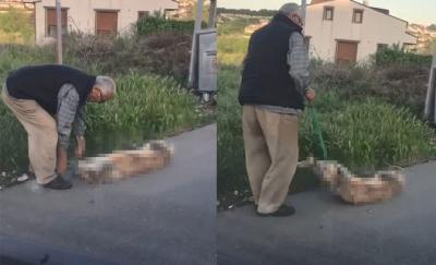 Sarıyer'de köpeği silahla vurarak öldürdüğü iddia edilen kişi gözaltına alındı