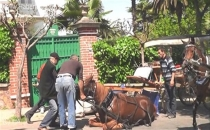 Selahattin Demirtaş'tan atlara eziyet!