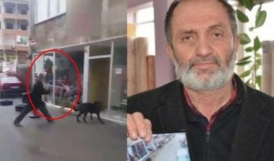 Sokakta yaşayan köpekleri sopayla döven saldırgandan skandal savunma: Kumpas kurdular