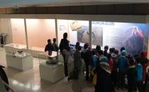 Tabiat Tarihi Müzesi'nden evrim bölümü kaldırıldı!