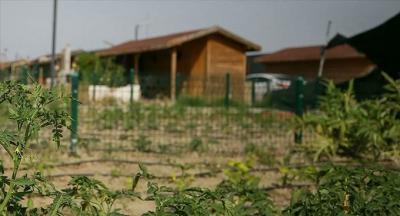 Tarım arazilerini hobi bahçelerine dönüştürenlere 3 yıla kadar hapis cezası