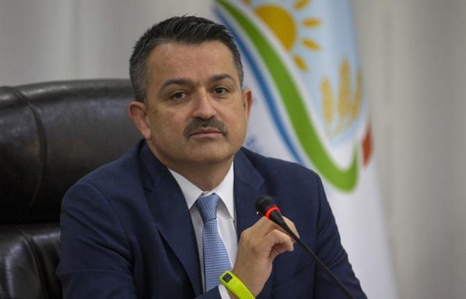 Tarım Bakanı Pakdemirli: Sofralık patates ile dondurulmuş patatesin alakası yoktur