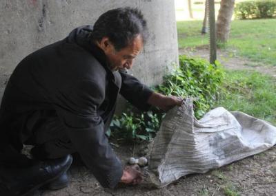 Taşları yastık yapan evsiz 'devlet malına zarar vermekten' cezaevinde