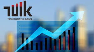 TÜİK: Türkiye ekonomisi 2020'de yüzde 1,8 büyüdü