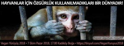 Veganlardan hayvan sömürüsüne karşı 'Vegan Yürüyüş 2018'