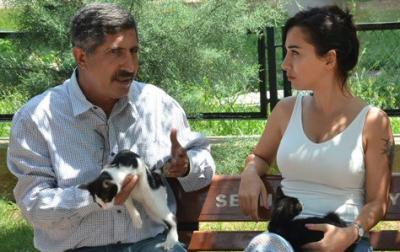 Yeni yasa belediyelere 'hayvanları öldür' yetkisi veriyor!