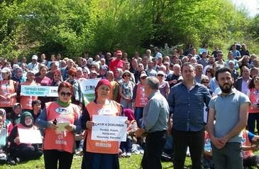 Zonguldak Çaycuma'da ağaçlar kesilmeyecek