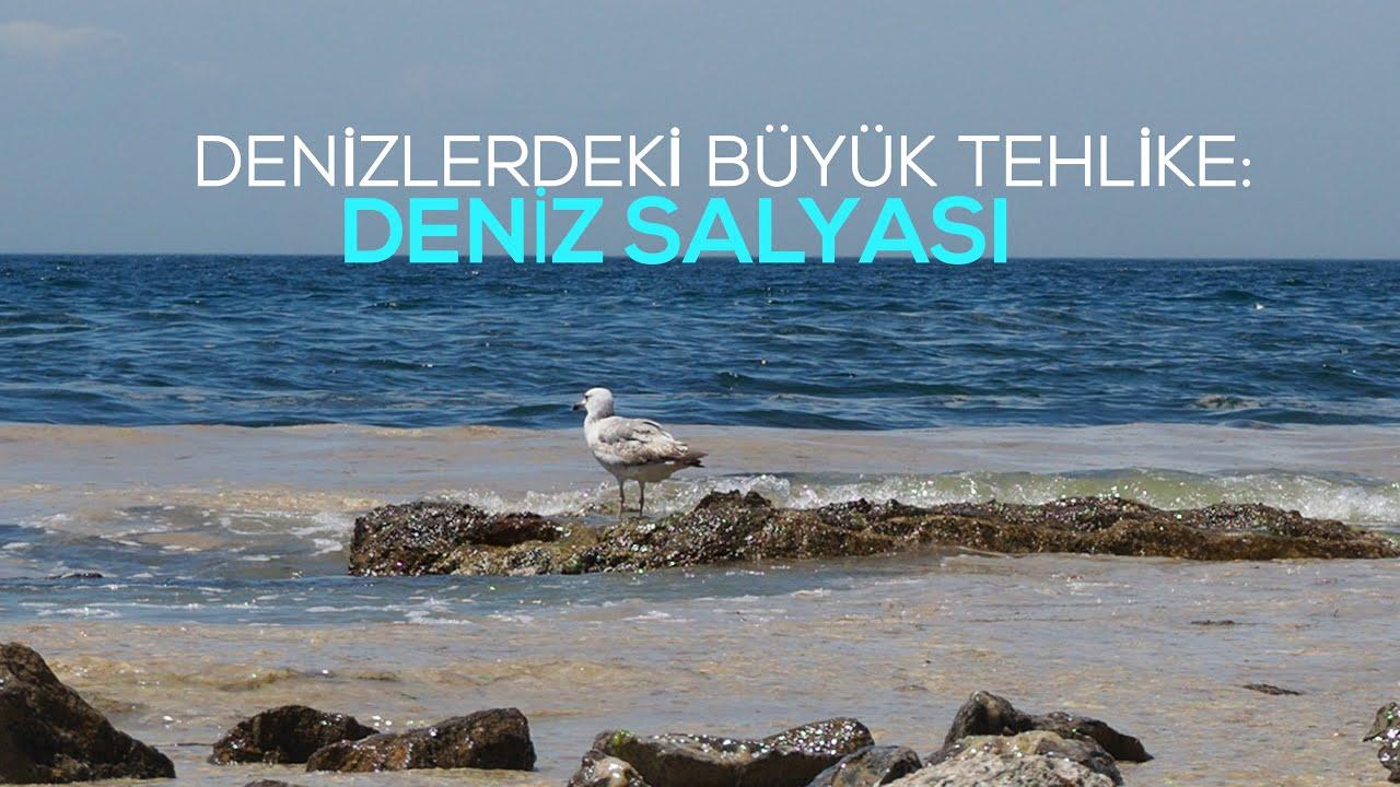 marmara denizi