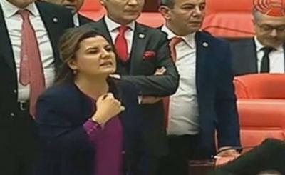 Fatma Kaplan: Yere batsın sarayınız, yere batsın başkanlığınız